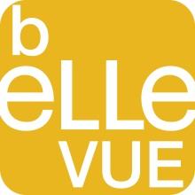 (c) Bellevuenet.ch